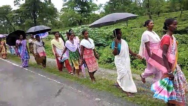 Tea Workers in WB on Strike Demanding Minimum Wage